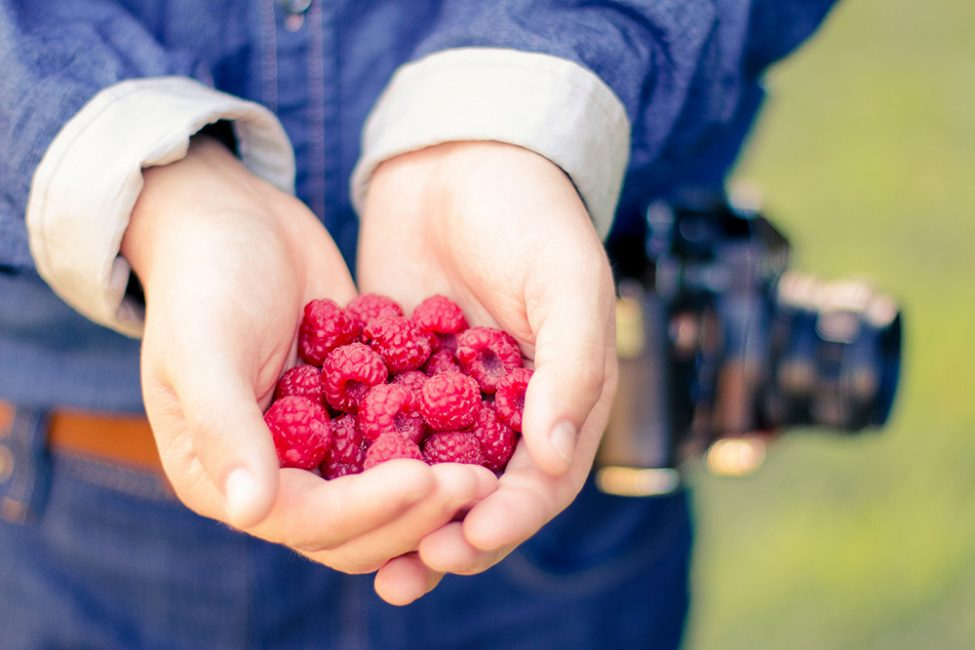De 37 lekkerste frambozen recepten