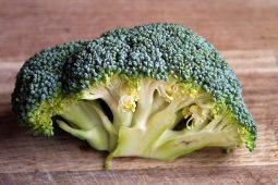 27 x de lekkerste broccoli recepten