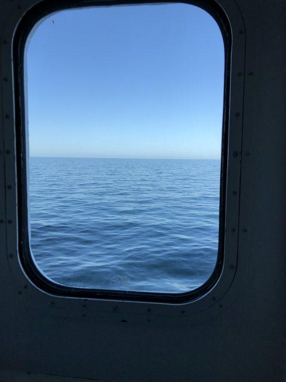 uitzicht vanuit onze hut Newcastle DFDS