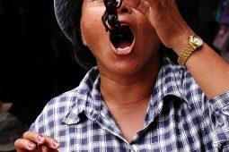 De bijzonderste gerechten op reis: gefrituurde spinnen in Cambodja